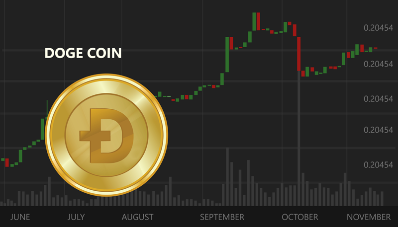 A Guide to Dogecoin